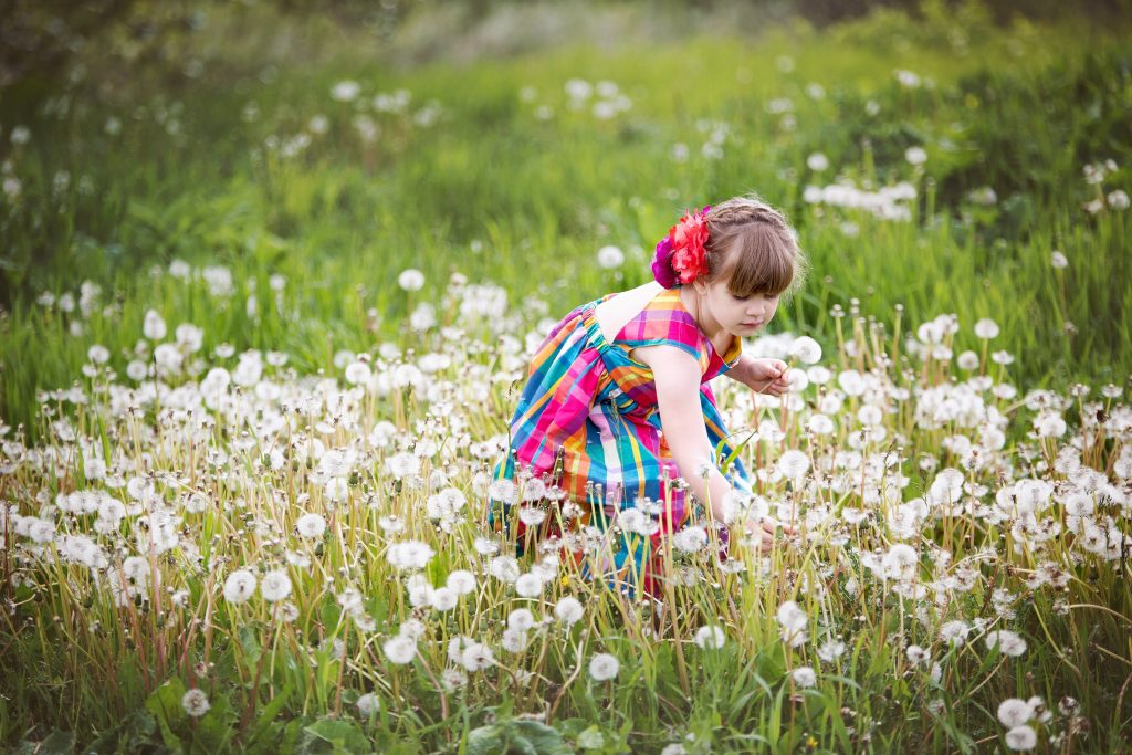 child-picking-dandelions